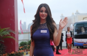 Miss World Contestant - Miss India Aditi Arya